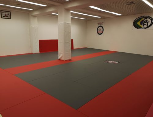 Our Martial  arts center in Weinheim